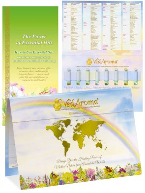 VedAroma Kit with PO in English